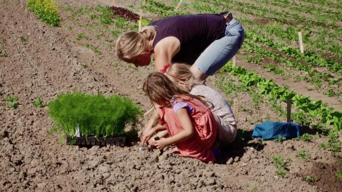 Sehnutá žena sází rostliny do zryté půdy. Těsně vedle ní sedí dvě děti./A woman bent over the ground, planting  into  the soil. Two children are sitting right next to her.